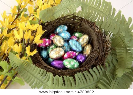 Birds Nest Of Foil Wrapped Chocolate Eggs With Flowers.