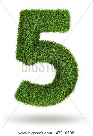 Natural grass number 5