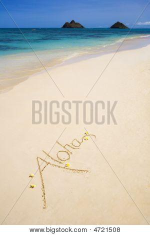 """The Word """"aloha"""" Is Written On A Sandy Beach"""