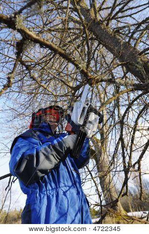Tree Surgeon In Acton