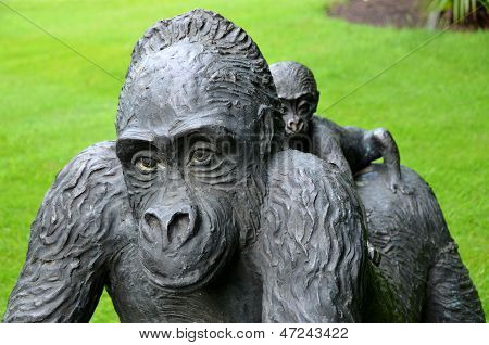 Gorilla with jong