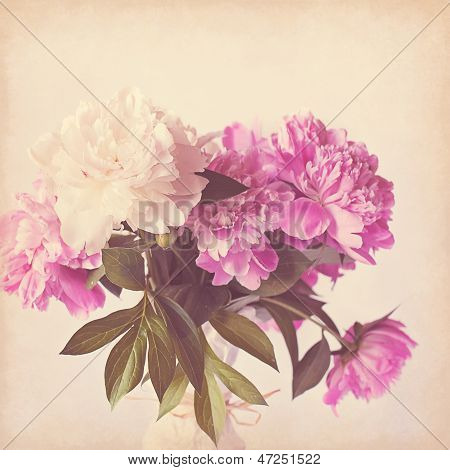 Pink peony vintage background