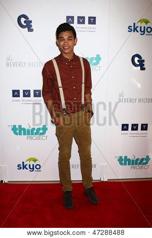 LOS ANGELES - JUN 25:  Roshon Fegan arrives at the 4th Annual Thirst Gala at the Beverly Hilton Hotel on June 25, 2013 in Beverly Hills, CA