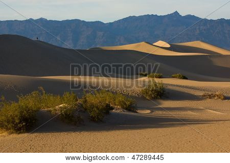 Mesquite Dunes In Death Valley