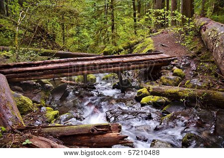 Wooden Bridge on hiking trail in mountain