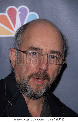 Richard Schiff at the premiere party for NBC's