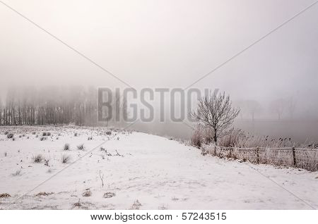 Mysterious Foggy Winter Landscape On A Very Cold Day