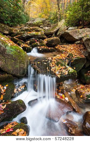 North Carolina Blue Ridge Mountain Autumn Cascade