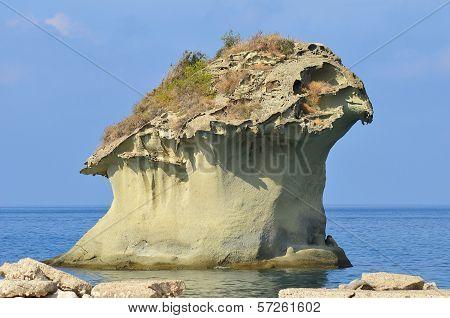 Ischia island seacoat