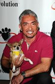 Cesar Millan  at a Press Conference For JDHF Animal Advocacy, Four Seasons Hotel, Beverly Hills, CA.