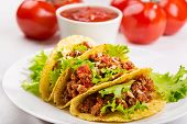 stock photo of tacos  - a plate of taco and fresh tomatoes - JPG