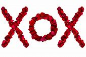 image of x-rated  - Red dried rose petals arranged into xox - JPG