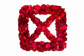 stock photo of x-rated  - Red dried rose petals in a box forming X - JPG