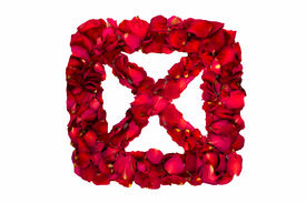 foto of x-rated  - Red dried rose petals in a box forming X - JPG