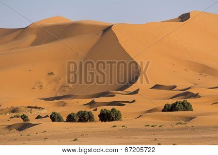 Foothills of the sand dunes in Erg Chebbi in Morocco