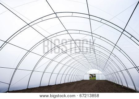 Greenhouse Tunnel Interior