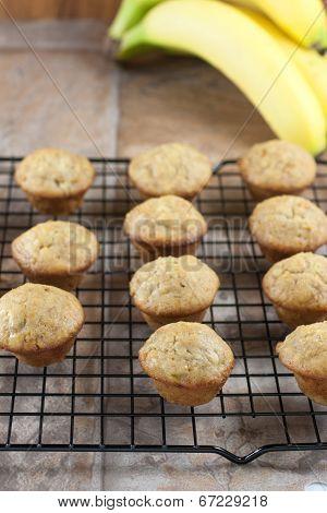 Mini Banana Muffins