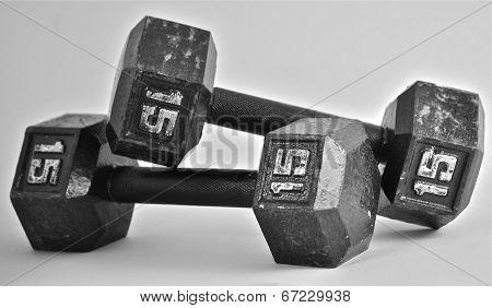 Fifteen Pound Weights