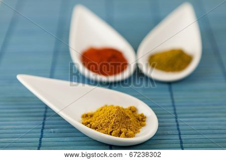 Dried Ground Spices In Ceramic Spoons