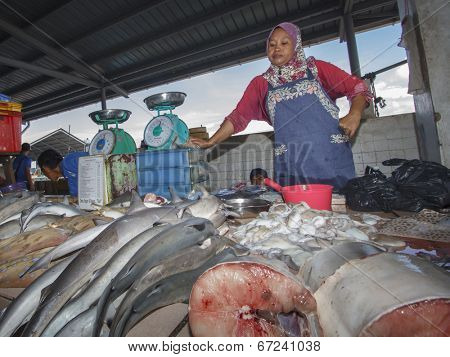 KOTA KINABALU, MALAYSIA - MAY 17 2014: Sharks at fish market. Environmental problem of trade in endangered species including Hammerhead Shark killed illegally for their fins.