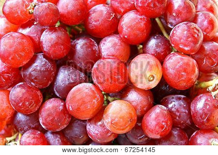 Fresh Red Globe Grapes Background