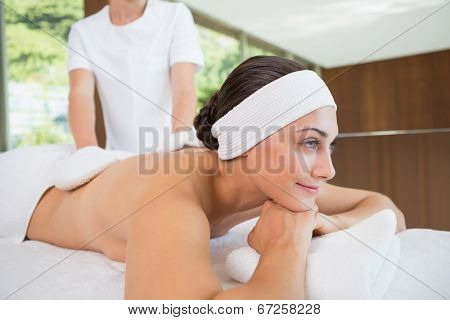 Beauty therapist rubbing smiling womans back with heated mitts in the health spa