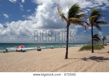 Beach In Florida