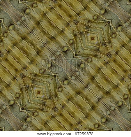 Background Pattern Made Of Great Marquis Butterfly Wing Skin Texture
