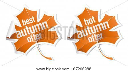 Best and hot autumn offer stickers set.