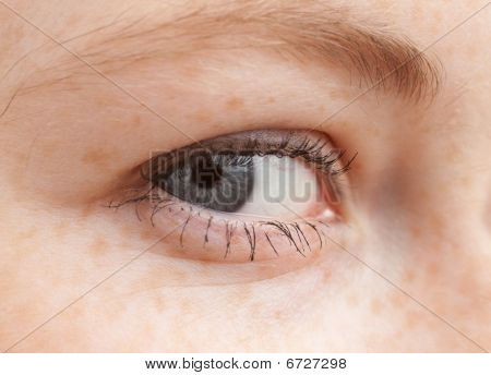 I See You - Macro Of Human Eye