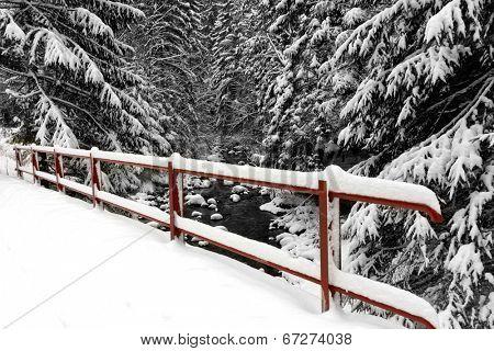 Bridge fence under snow in forest