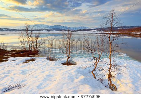 Abisko,s national park.  Sweden.  Norrbotten.  Lapland.  Lake Tornetrask