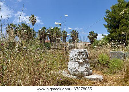 Kos island in Greece. The ancient Agora