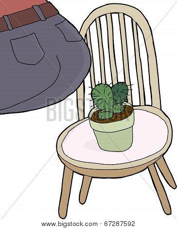 Sitting On Cactus
