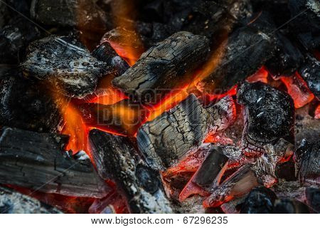 Fire On Charcoal For Food Grilling.