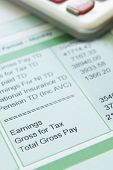 picture of paycheck  - Still life shot showing monthly deductions from salary - JPG