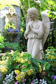 stock photo of garden sculpture  - Statue of a praying angel in the garden - JPG