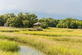 stock photo of marsh grass  - A view of a gazebo located on Shem Creek and a salt water marsh in the Mount Pleasant - JPG
