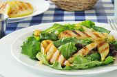pic of romaine lettuce  - Grilled pear salad on romaine green leaf and tango lettuce - JPG