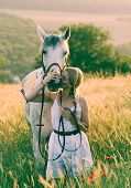 foto of beautiful horses  - blonde long hair woman kissing beautiful horse - JPG