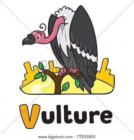 Funny Vulture, Illustration For Abc. Alphabet V