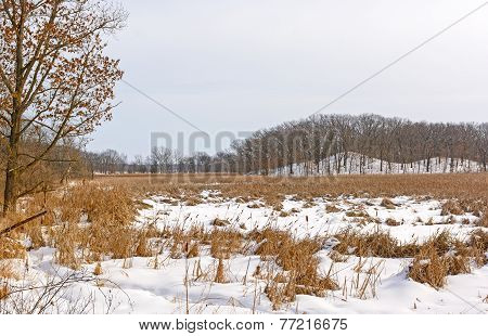 Marshland And Hills In Winter Colors