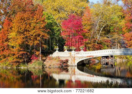 Central Park Bridge In Fall