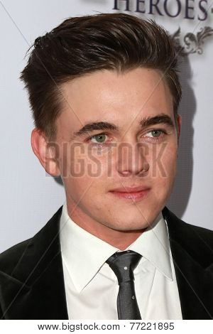 LOS ANGELES - NOV 8:  Jesse McCartney at the 3rd Annual Unlikely Heroes Awards Dinner And Gala at the Sofitel Hotel on November 8, 2014 in Beverly Hills, CA