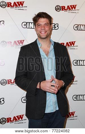 LOS ANGELES - NOV 18:  Brian Drolet at the CineDopes Web Series Premiere And Launch Party at the Busby's East on November 18, 2014 in Los Angeles, CA