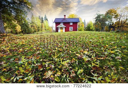 farm, cottage set in old rural landscape with autumn leaves