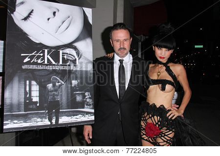 LOS ANGELES - NOV 21:  David Arquette, Bai Ling at the
