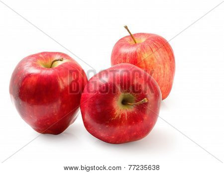 Red Washington Apple Isolated Clipping Path.