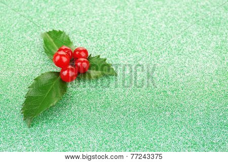 European Holly (Ilex aquifolium) with berries on green background