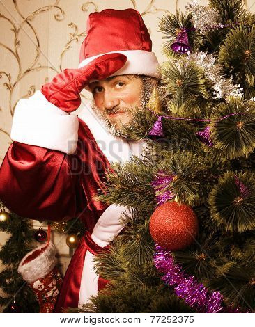 portrait of funny Santa Claus at home with christmass tree